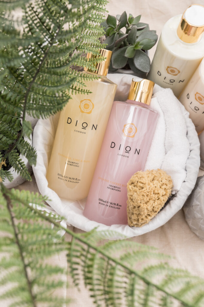 Product Lifestyle Shot - Dion-119